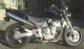 HORNET600